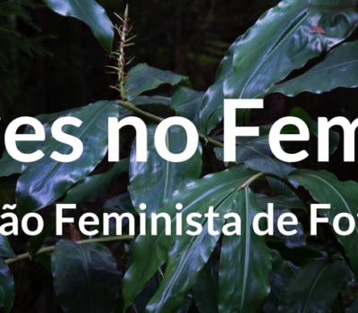 Olhares no Feminino